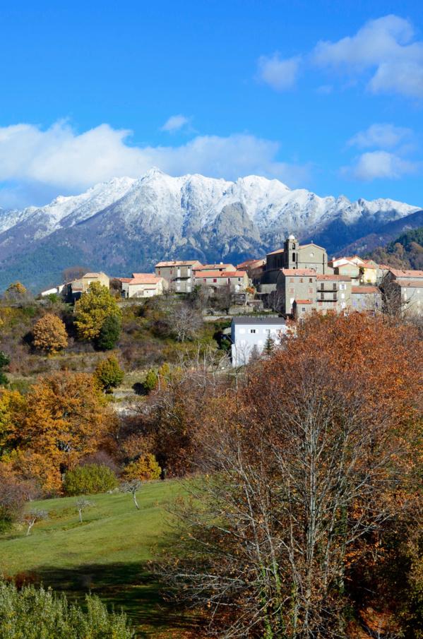 Visitez le village de Cozzano