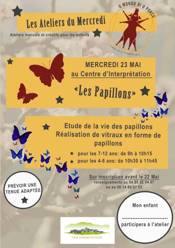 Atelier sur les papillons le 23 mai