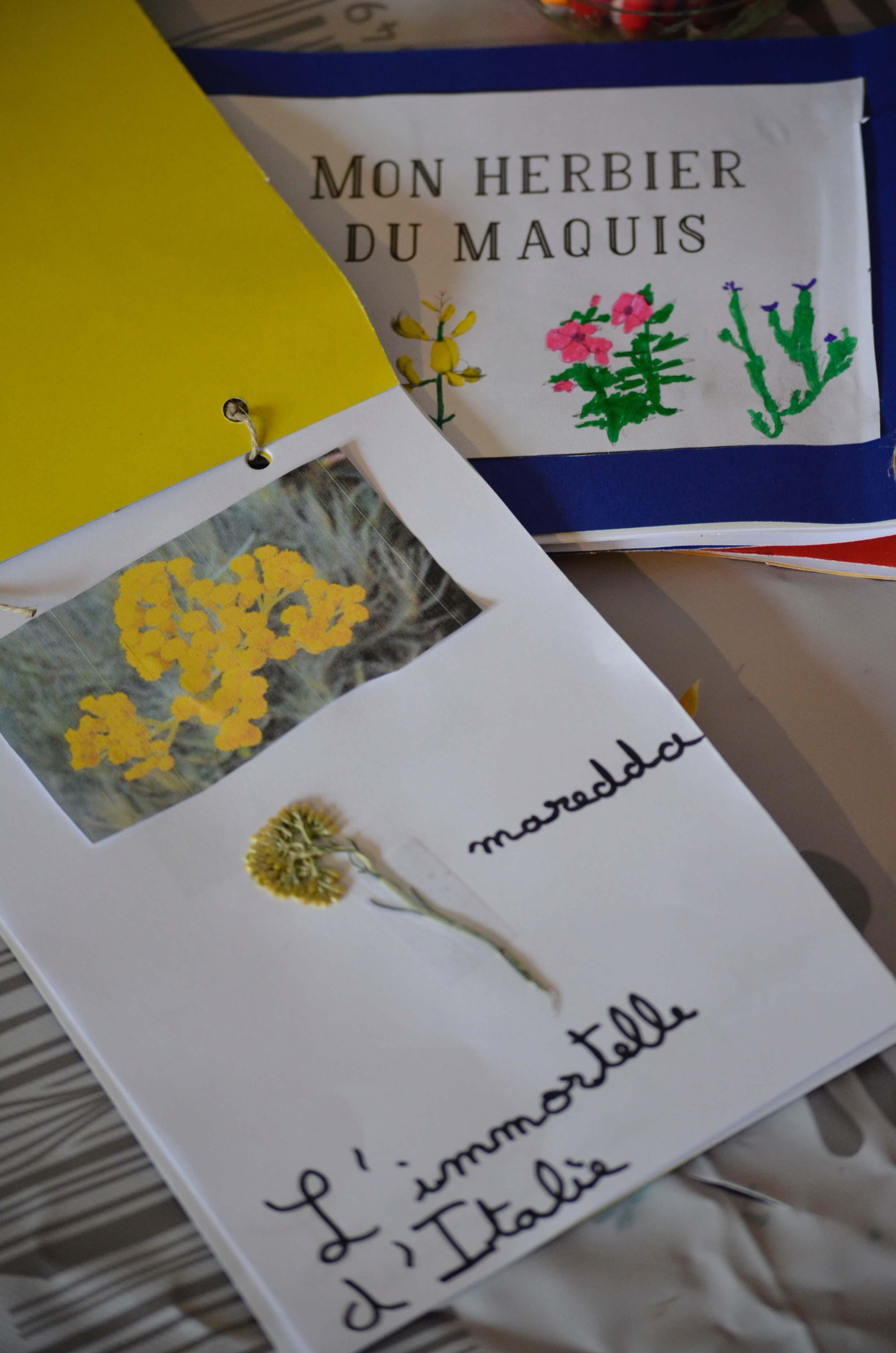 L'herbier du maquis
