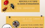 Les ateliers du mois d'octobre